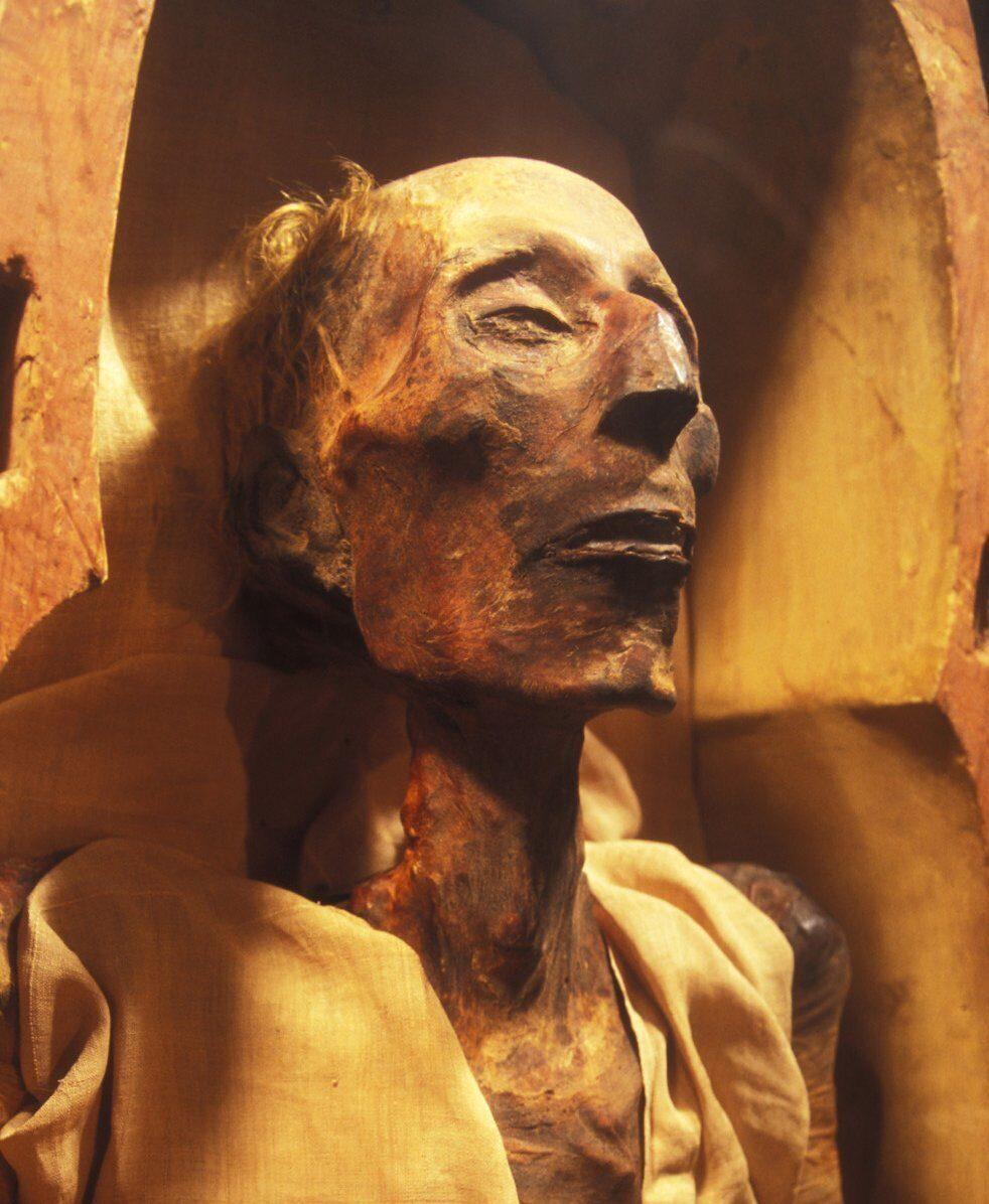 рамзес великий фото камин